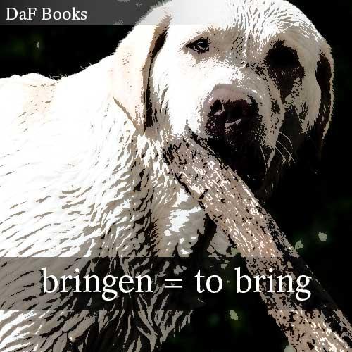 bringen - to bring: DaF Books vocabulary list